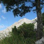Massanella summit from below