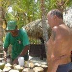 noix coco à gogo