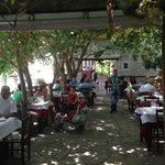Taverna Stelios - the terrace