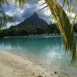 Bora Bora vista dal resort