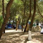 Photo of Camping Santa Maria di Leuca