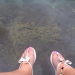 Clear water with fishes!!! I passed on getting in the water as it was a cool day!