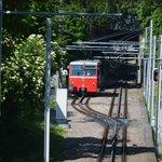 Dodler train