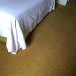 carpet not clean