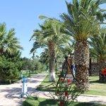 Buyuk Anadolu Didim Resort resmi