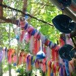 dekorlar hoş :)