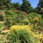 Our stunning gardens