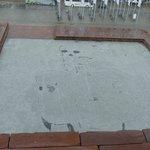 Skull in Plaza