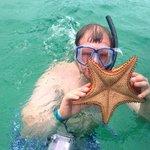 Estrella de Mar :)