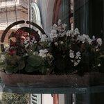 Отель встречает цветами