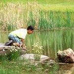 Ouray KOA Pond