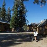 Lodge grounds and wheelbarrow bellhop (my wife :)