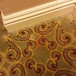 Stained and dirty hallway carpet