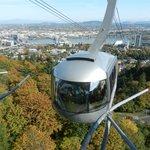 Great Views from any Gondola Window