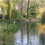 осень в зоопарке Берлина