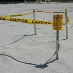 Protected turtle nest.