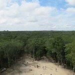 La enorme selva desde arriba de la pirámide