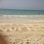 Staff work hard to keep beach immaculate