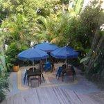 patio area.