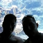 En el acuario!!!