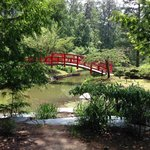 Bridge in the Asian Garden