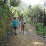 walking track2