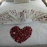 Dabaklar otelin ve sevgilimin bana sürprizi