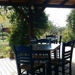 Hotel dinning facing a gorgeous garden