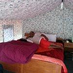 Padma Lodge at Jispa