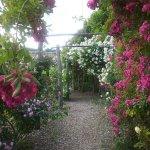 jardins de la chatonnière