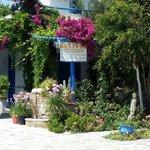 Välkommen till Dina Welcome to Dina