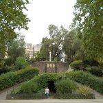 Bellini garden.