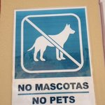 Signs around the hotel, seen about 6 dogs.