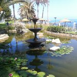 estanque en los jardines
