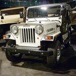 Emirates Auto Museum Collections