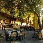 Cinar Restaurant