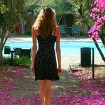 Kleiner Pool im Blumenmeer