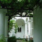 白い回廊と藤棚のコントラスト
