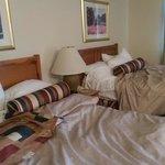 Beds.. comfy. Nice pillows.