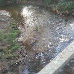 Victoria's park, bridge & small river