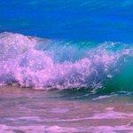 Wave on our beach