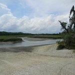 river at low tide