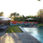 The pool at sunrise, Royal Chundu River Lodge