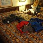 Las camas y colchones muy incomodas y chicas.