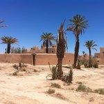 Skoura la palmeraie et la kasbah