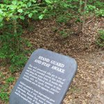 rifle pit and marker at Cold Harbor