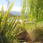 Beautifl gardens