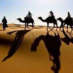 Erg chbbi Camel trek