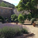 the lavender courtyard