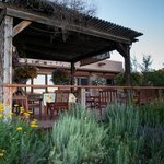 Back porch breakfast overlooking vineyard